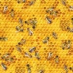 Honey Bees & Beehives