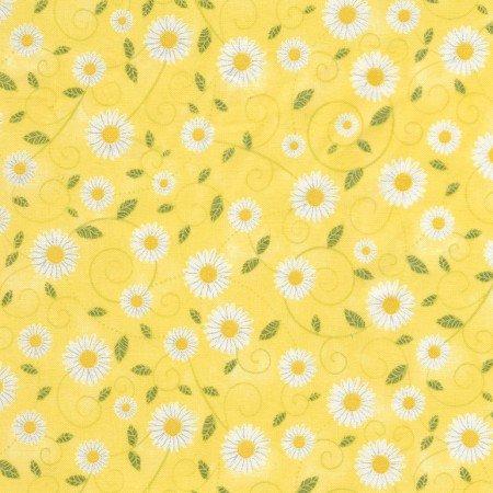 Sunshine  C5498-Yellow