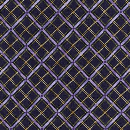 TT Violet-C2798 Purple   Bias Plaid on Purple
