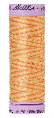 Mettler 9075-9833 Thread