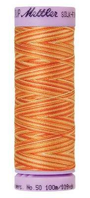 Mettler 9075-9834 Thread