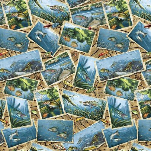 Keep It Reel - Fish Postcards