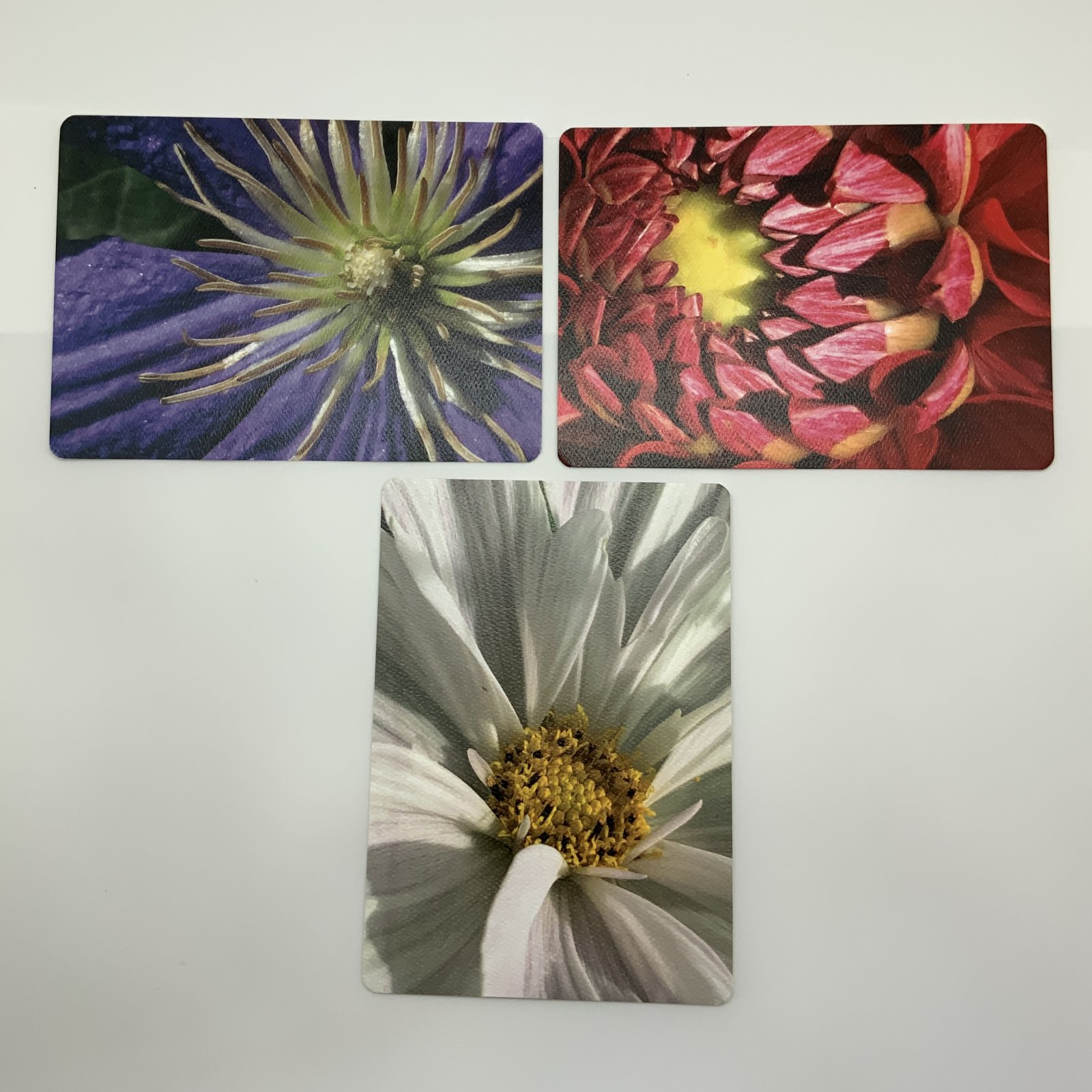 Artistic Floral Postcard Collection 4