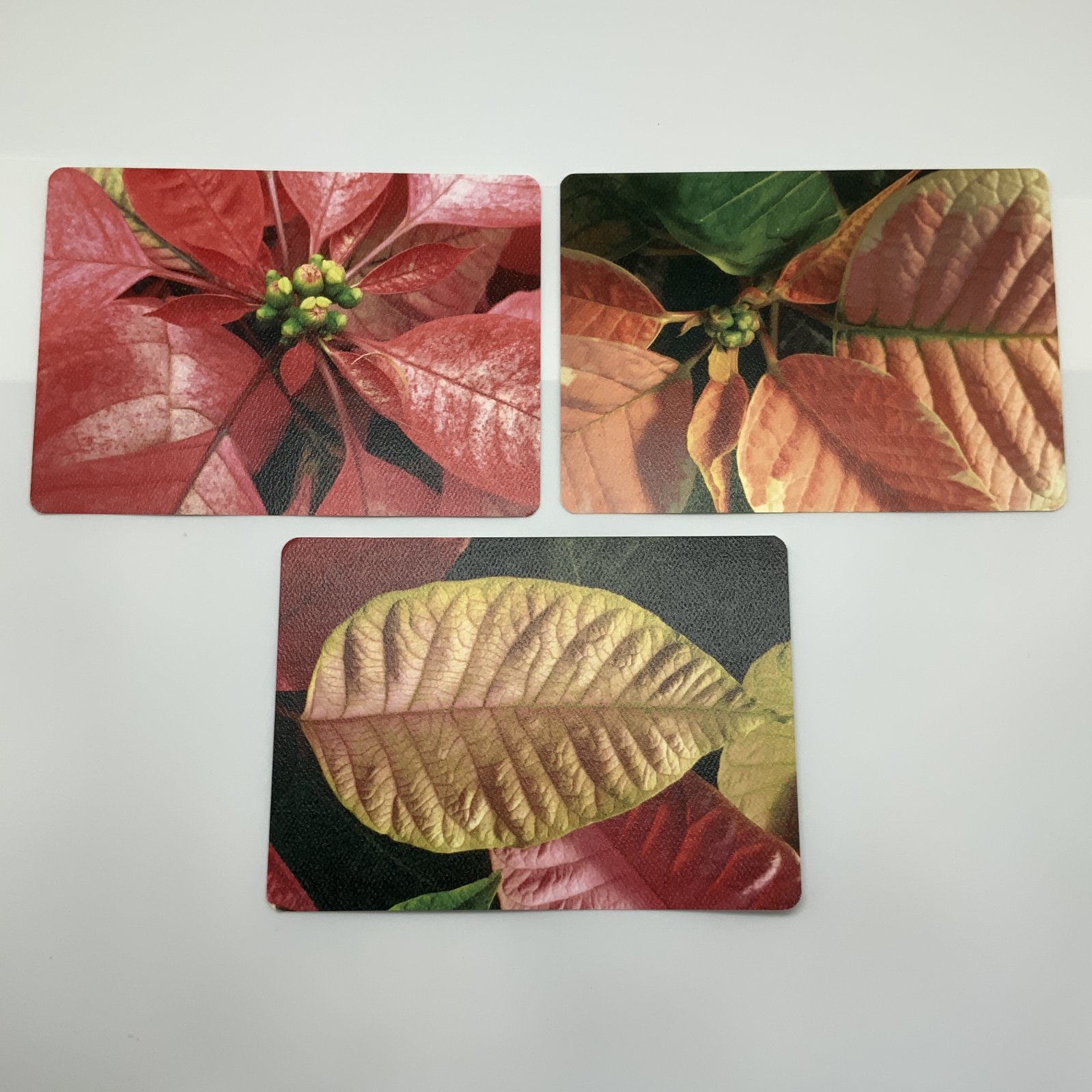 Artistic Floral Postcard Collection 3