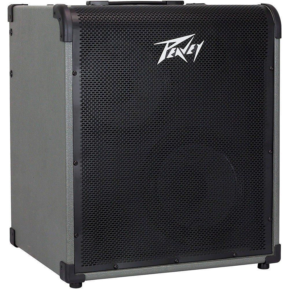 Peavey Max 300 Bass Amp