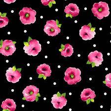 Brooke Black Hot Pink Flowers