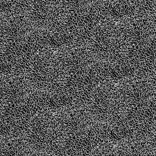 Hopscotch Black Leaves 3221