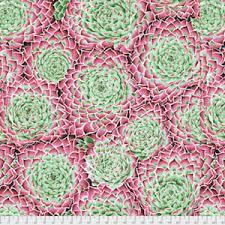 KF Succulent Pink