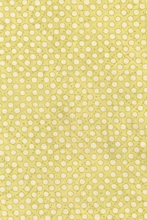 Napa by Pearl Krush for Riverwoods Collection : 1623-4