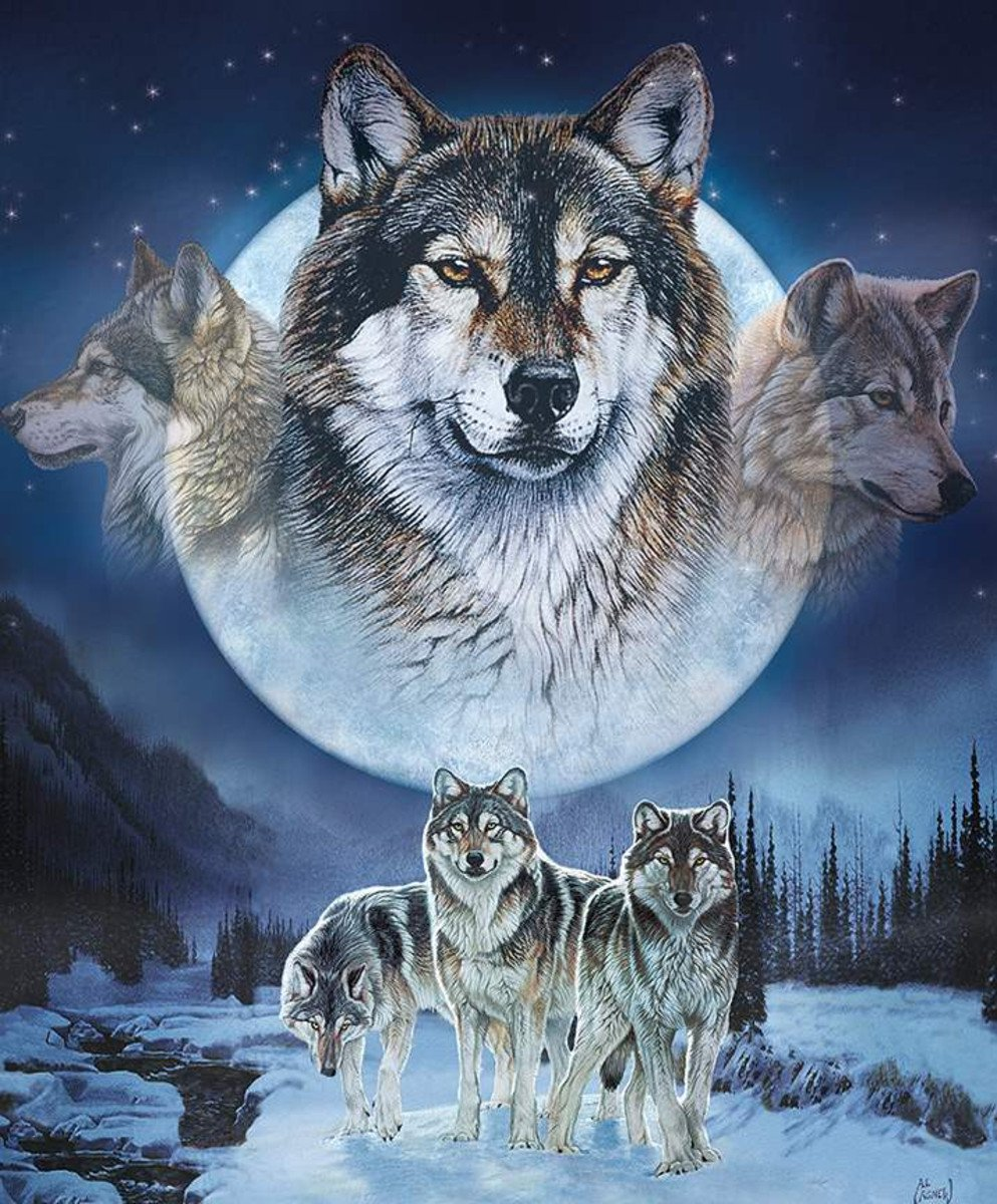 Natures Finest Dream Catcher Wolf Panel by Riley Blake Fabrics P9952-WOLF