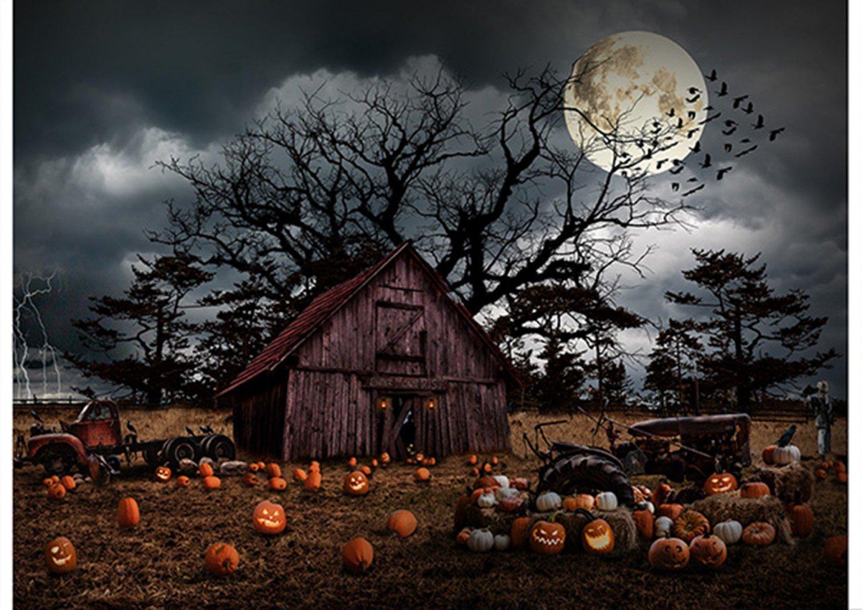 Pumpkin Haunted Halloween Panel by Hoffman Fabrics T4863-192 Pumpkin