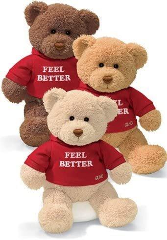 Gund Hugs Feel Better Bear Single