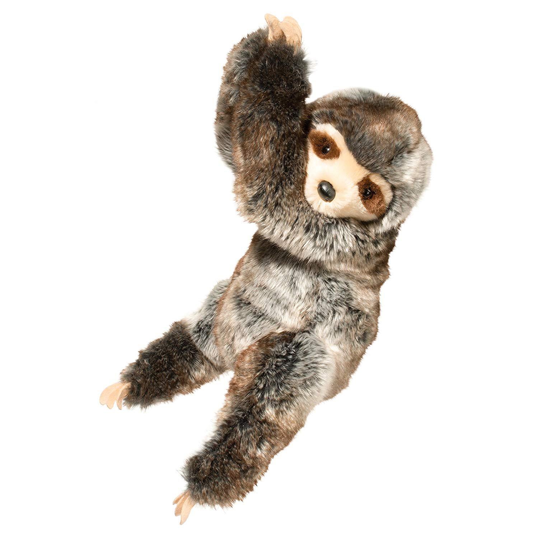 Douglas Ivy Hanging Sloth