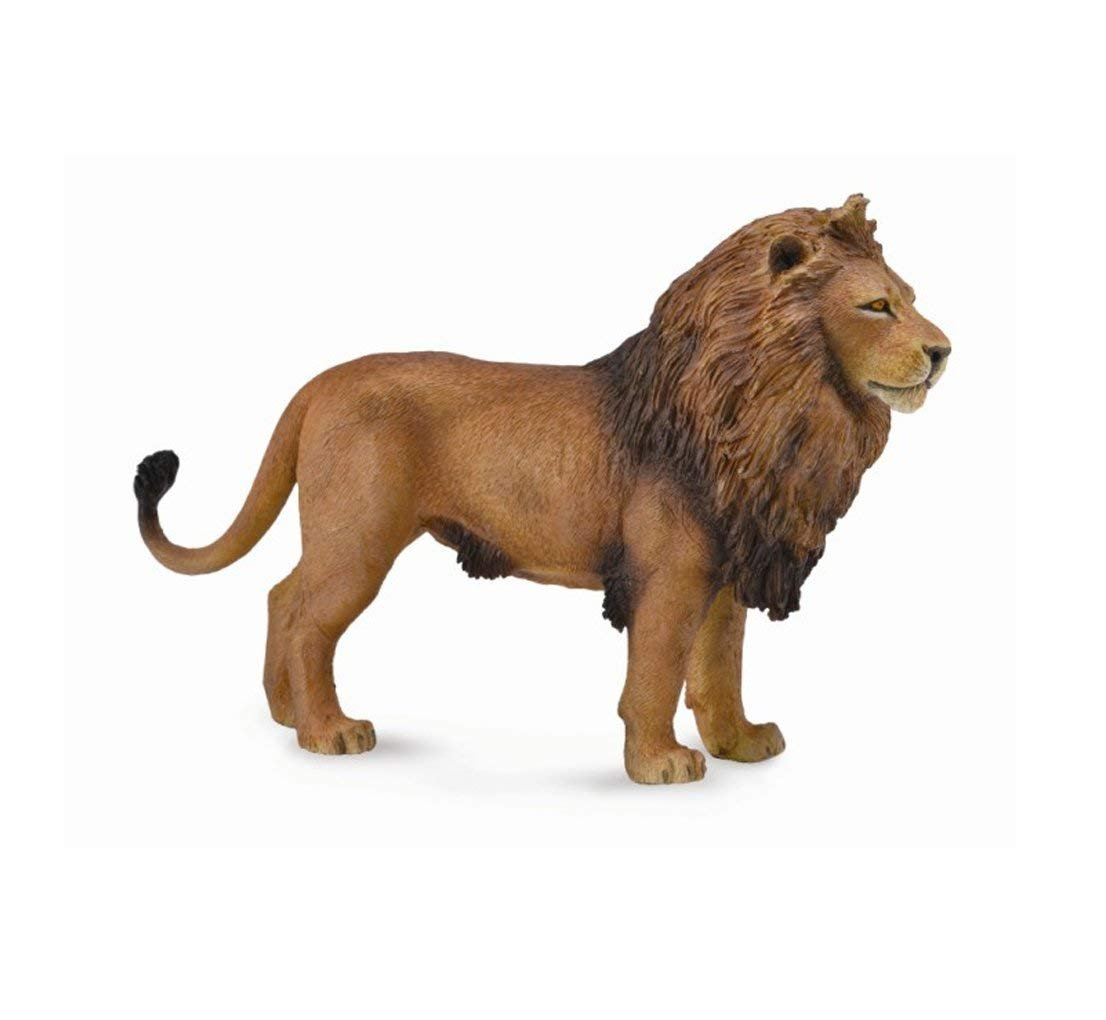 Collecta African Lion Toy Figurine