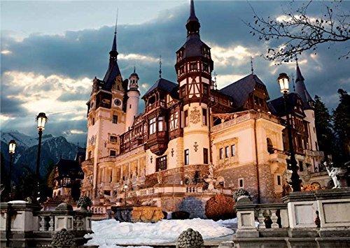 DToys 1000 pc Romania Peles Castle