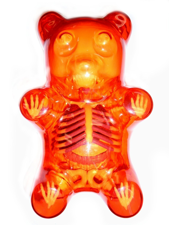 XXRay 4D Model Clear Red Gummi Bear Anatomy by Jason Freeny ...