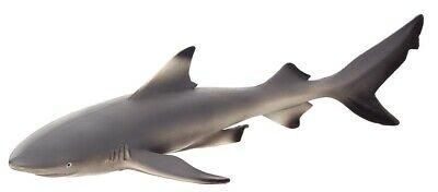 Mojo Black Tip Reef Shark (387357) Figurine
