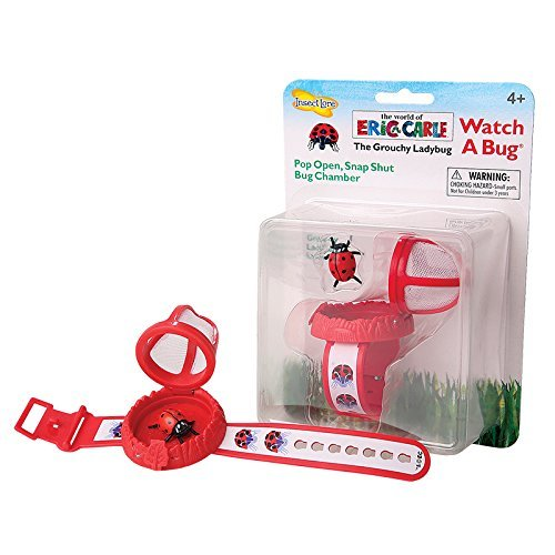 Insect Lore Eric Carle Watch a Bug