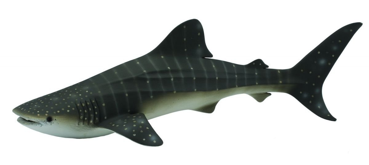 Collecta Sea Life Whale Shark Toy Figure