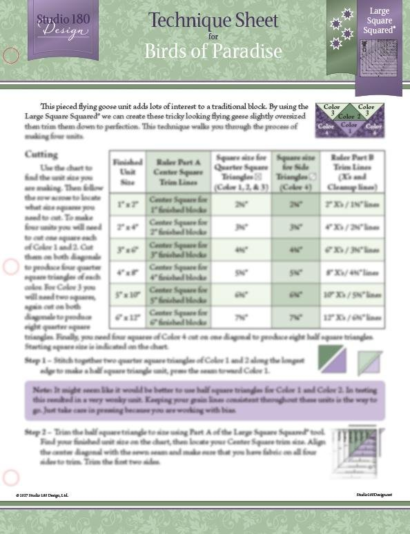 Tucker - Birds of Paradise Technique Sheet DTEC17