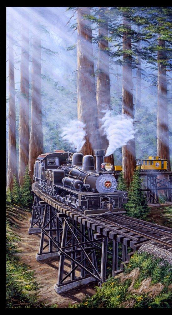 Blank Redwood Express 24 inch Panel 8436P-090 Grey