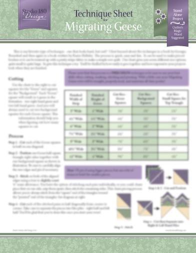 Tucker University Technique Sheet - Migrating Geese DTEC04