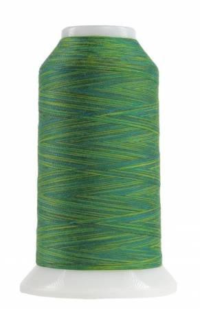 Omni Variegated Polyester Thread 40wt 2000yd Rolling Hills 9007