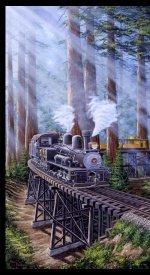 Blank Redwood Express 24 inch  Panel 8436P-90 grey