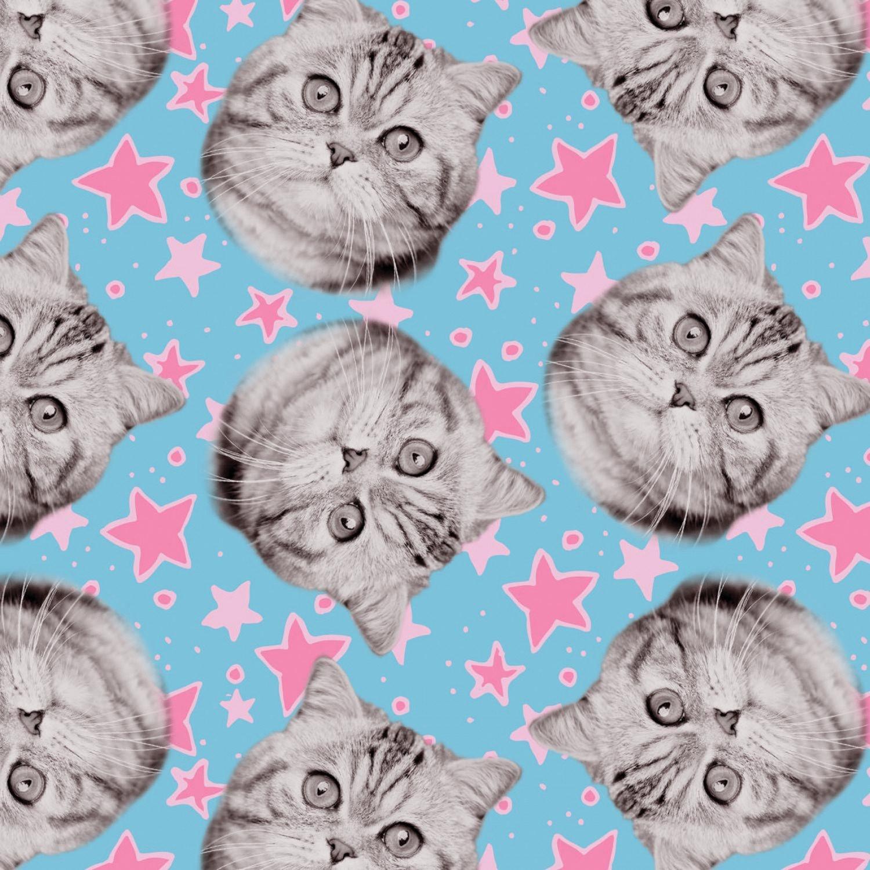 Camelot Fabrics Cats Rule by Rachael Hale 34180102 1 Blue Superstars $10.20/yd