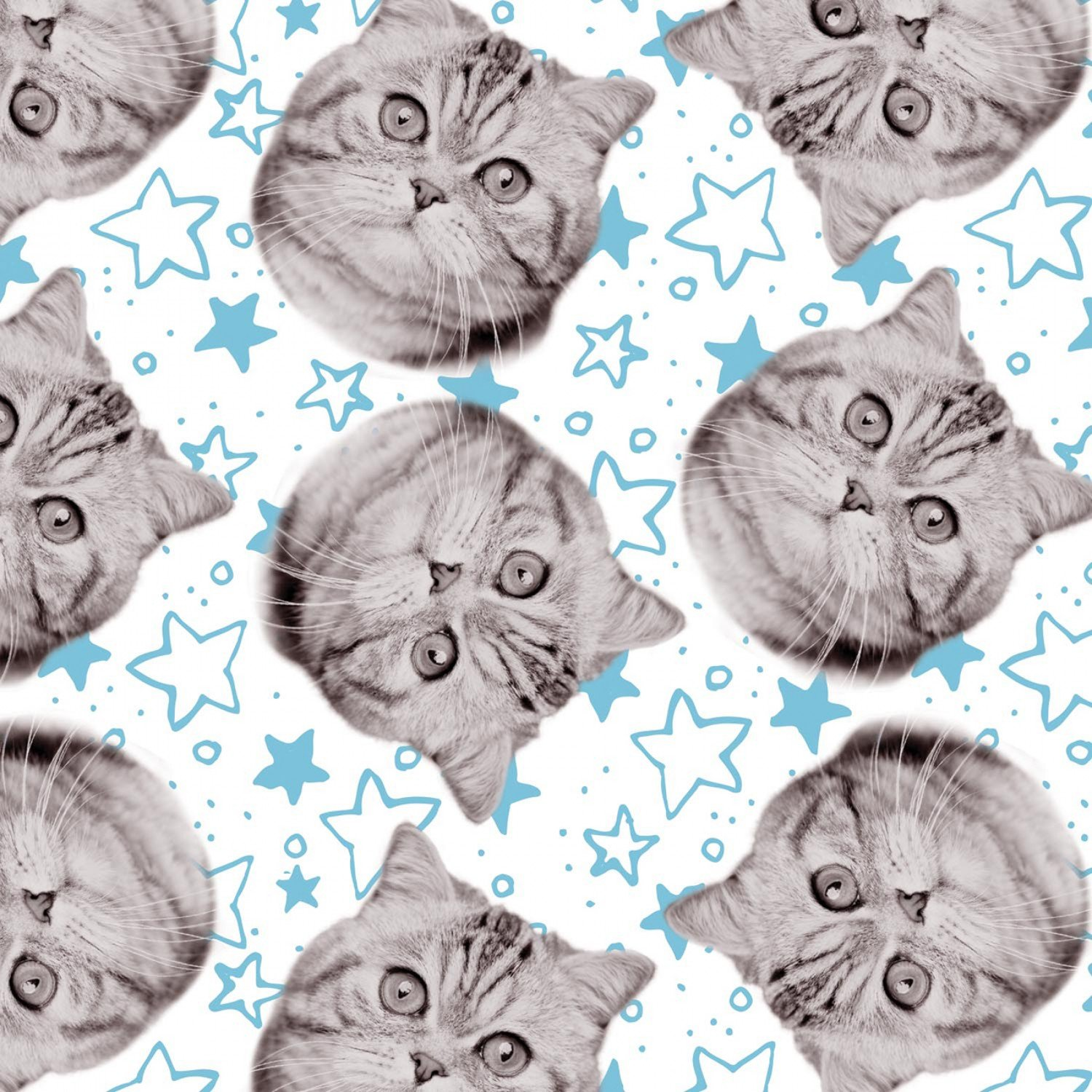 Camelot Fabrics Cats Rule by Rachael Hale 34180102 2 White Superstars $10.20/yd