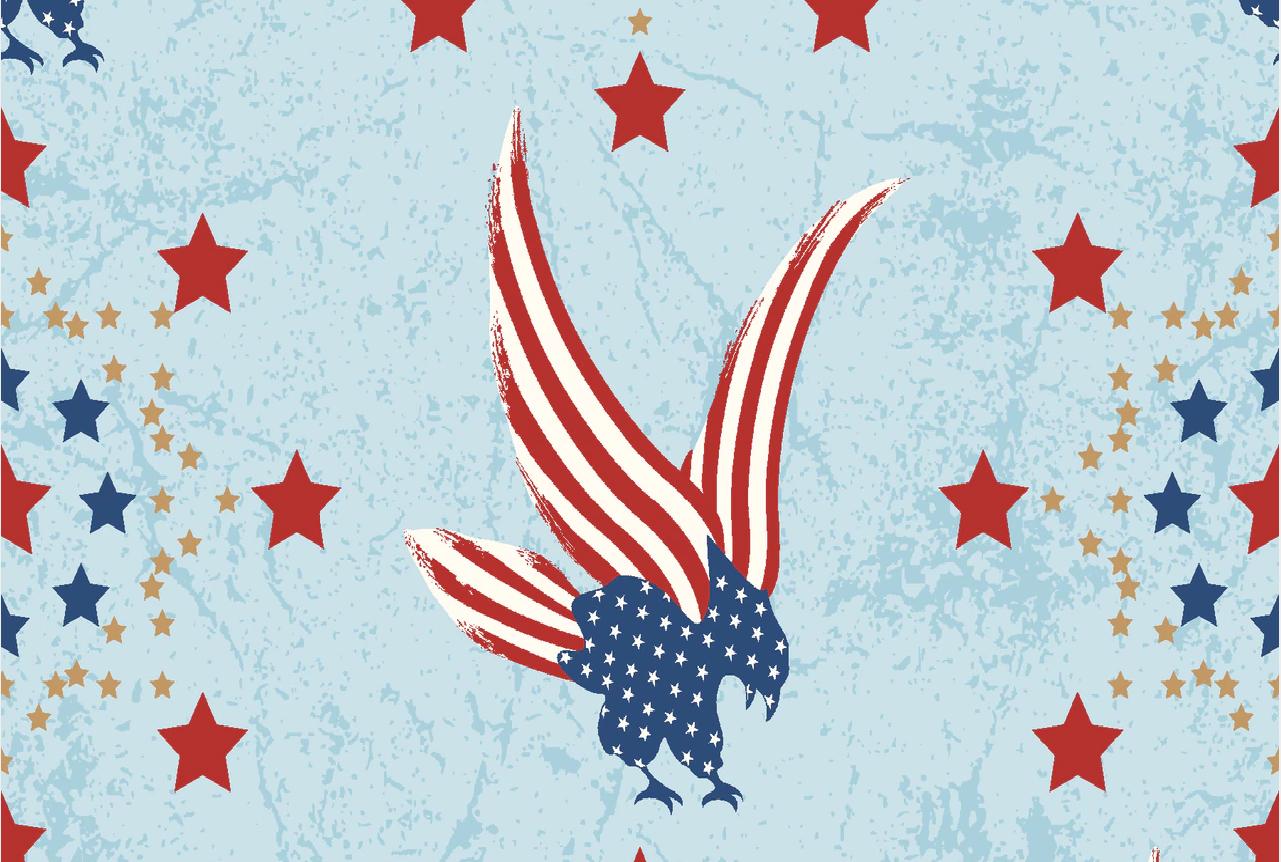 Stars of Valor - Eagle Print