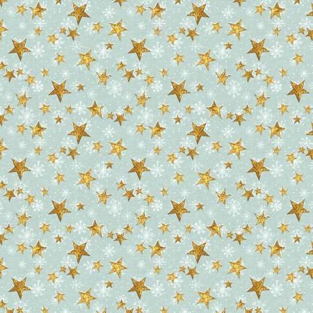 96423-451 Teal Stars
