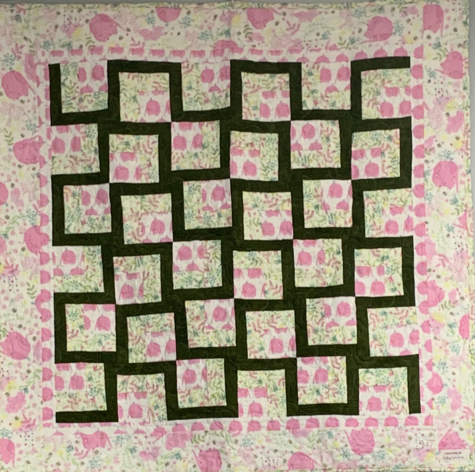 Baby Kissing Frogs Quilt Kit (39 x 39)