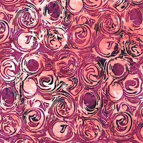 Swirl - Celosia