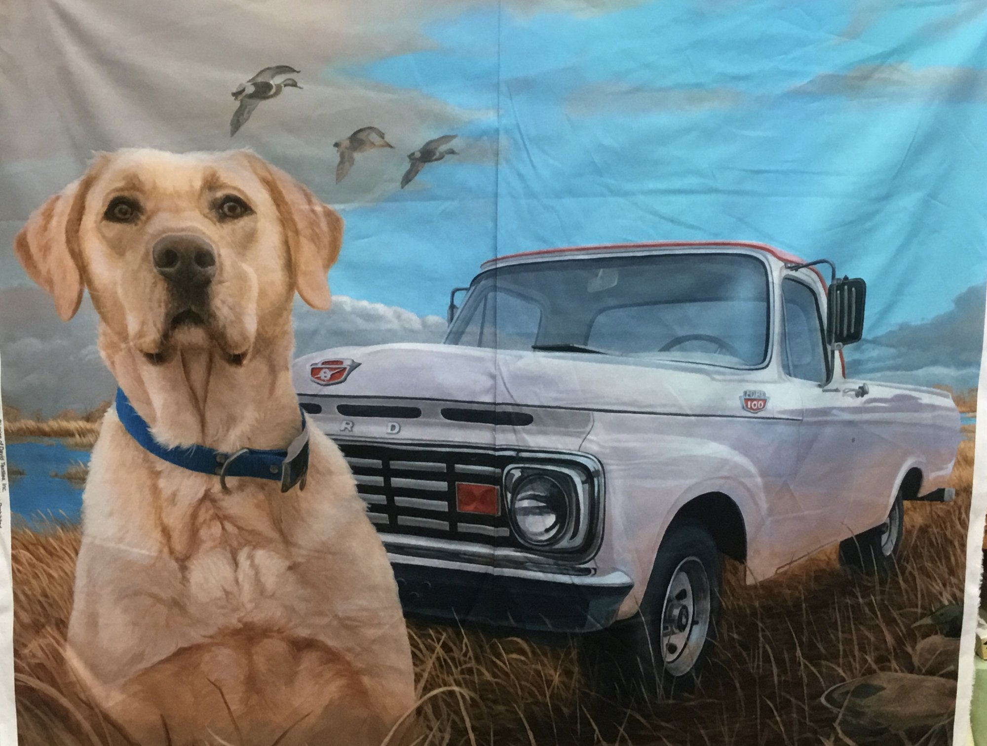 Lab & Ford Truck Panel