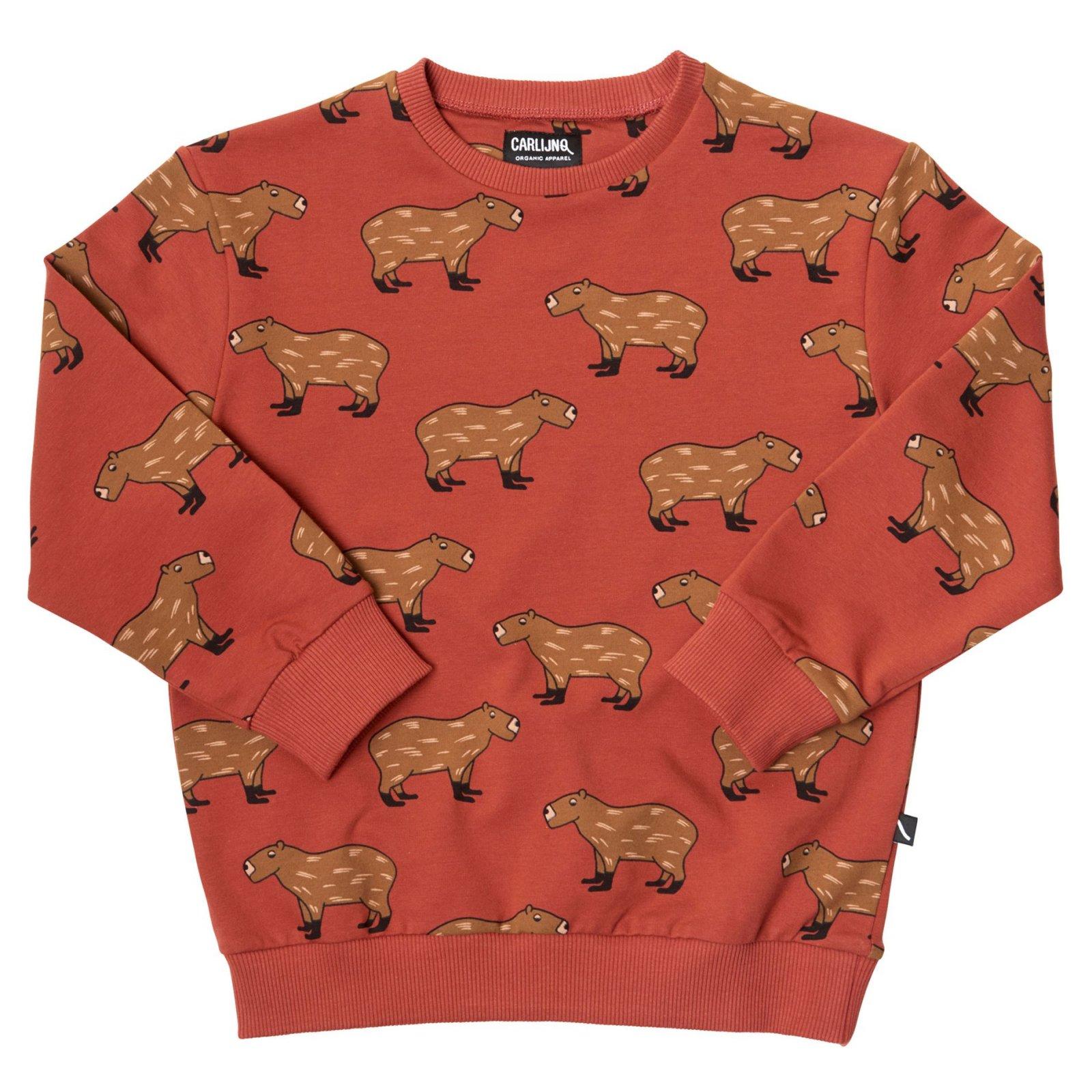 Capybara Sweater by Carlijnq