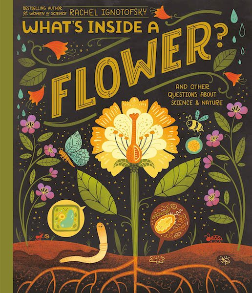 What's Inside A Flower? by Rachel Ignotofsky