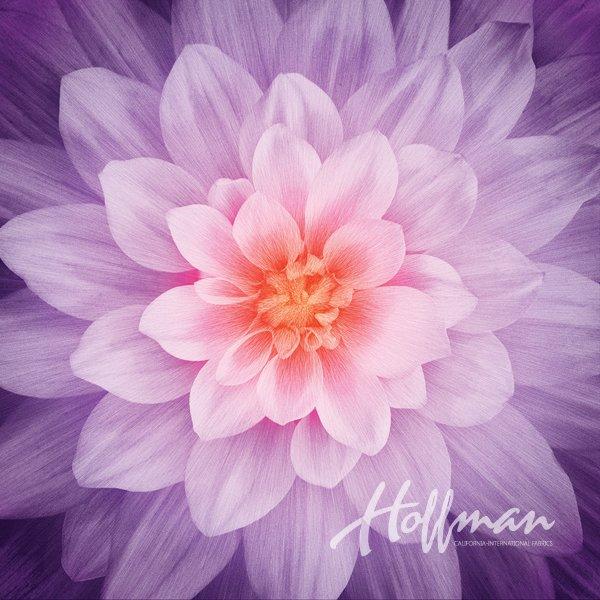 Hoffman Fabrics Dream Big Orchid Flower Bloom Floral Panel