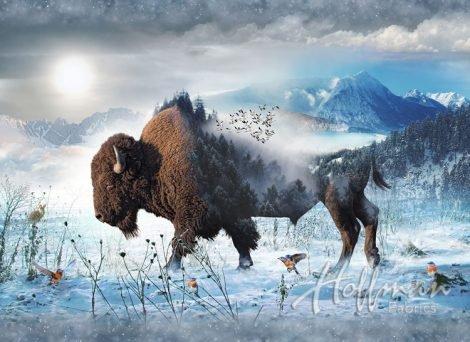 Hoffman Call Of The Wild Bison Buffalo Panel Cotton Fabric