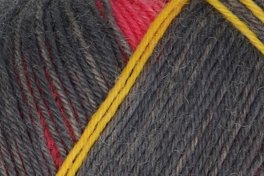 Pairfect Sock Yarn
