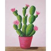 Cactus In Bloom Adult Paint