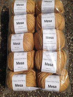 Mesa Cotton