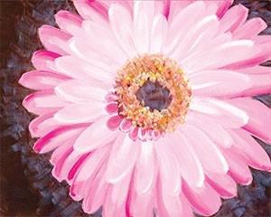 Pink Gerber Daisy Adult Paint