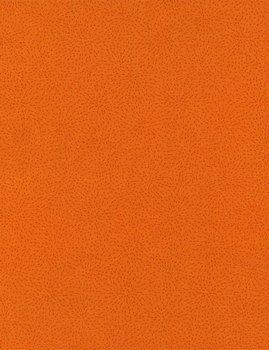Dash C4500 Orange