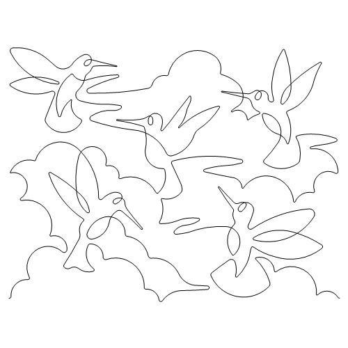 Hummingbird Skies