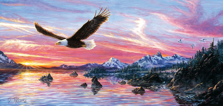 Silent Wings of Freedom