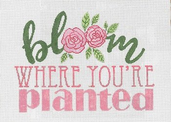SG181243 BLOOM WHERE YOU'RE PLANTED by Sandra Gilmore