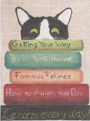 CBKGDPL01 Cat with Books by Ginny Diezel