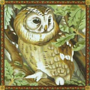 MS1492NN BORDERED OWL by Melissa Shirley Designs