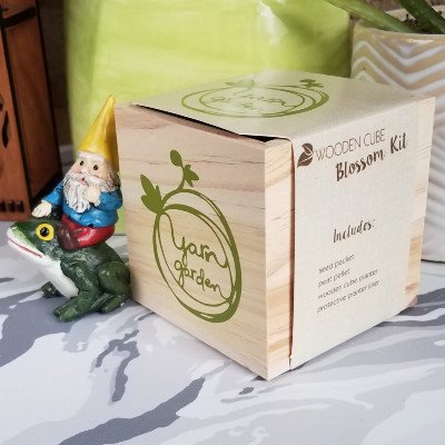Wooden Cube Marigold Grow Kit